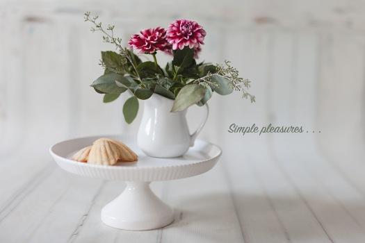 07-24-2017 Gerbers & Madeleine Cookies-30_blog