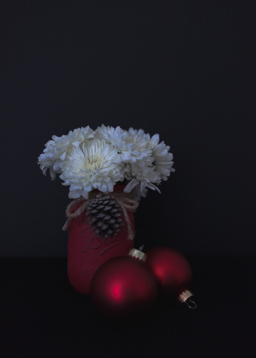 Christmas Flowers 11-26-17_15_LR
