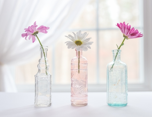 02-04-18 Pink Daisies-161_LR