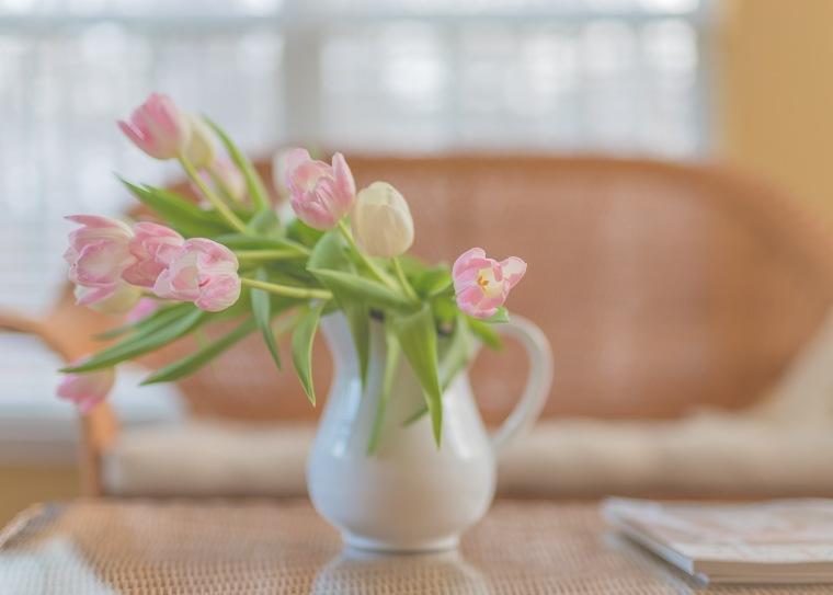 03-13-18 Tulips_87_LR