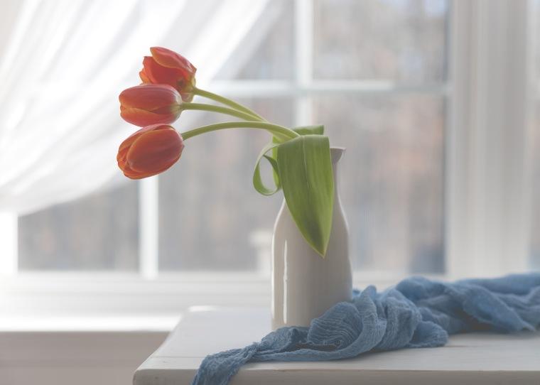 04-01-2018 Tulips & Cups-35_LR